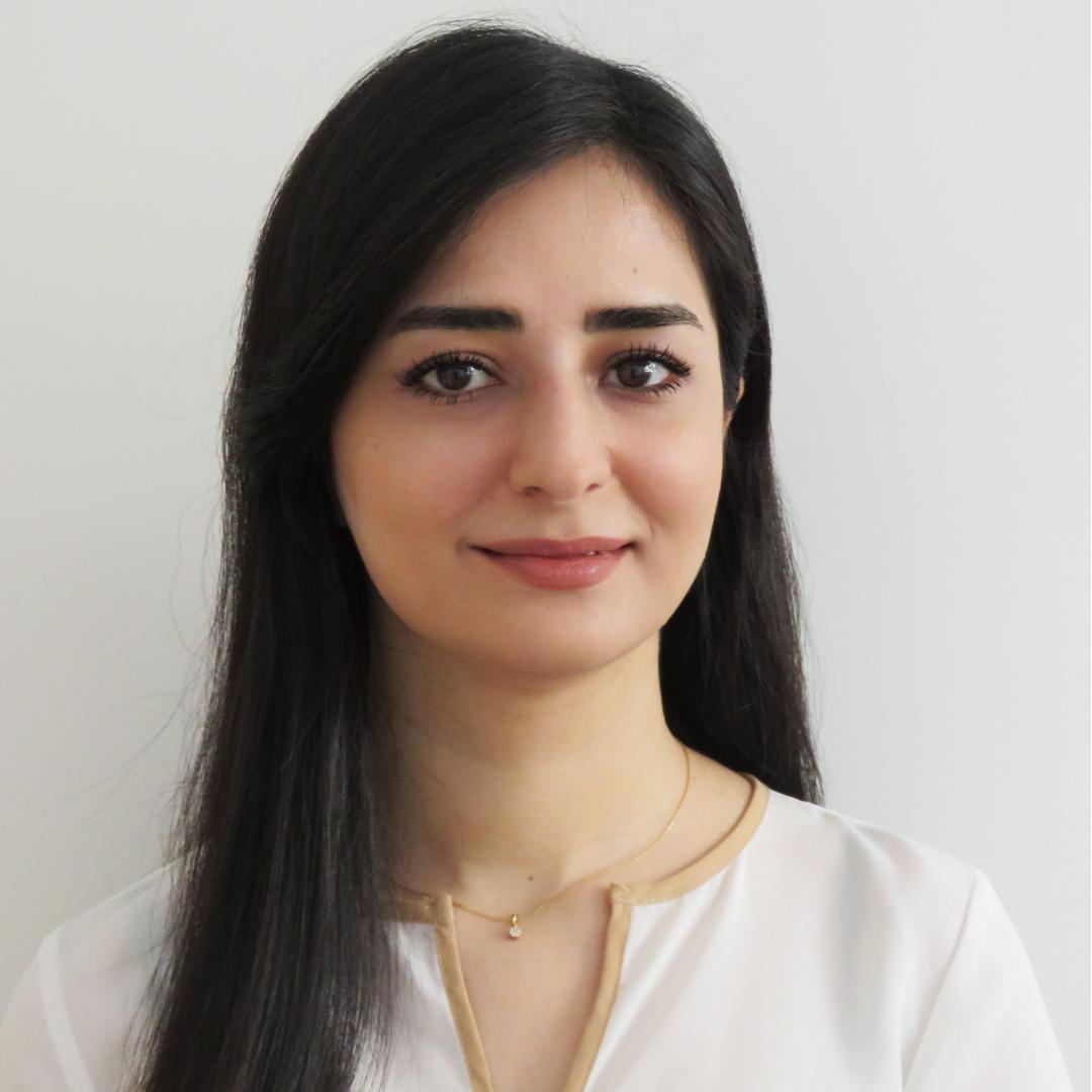 Bahareh Najafi